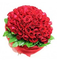 Global red Roses